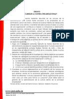 Ensayo- Cultura Organizacionl