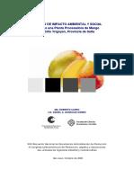 Evaluacion de Proyectos Estudio de Impactol y Social