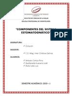 COMPONENTES ESTOMATOGNÁTICOS