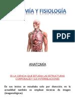 Niveles de organización del cuerpo humano (1).pptx