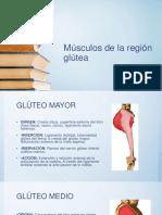 MUSCULOS DE LA REGION GLUTEA