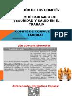 Conformacion-Comites.pptx
