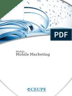 MMDC A3 Mod9 Mobile Marketing