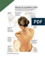 La Cura Para La Fibromialgia