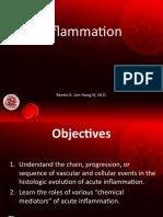 2 Inflammation