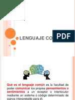 Lenguaje Común -