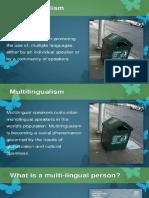 Multilingualismreport.pptx