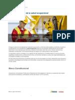 marco_regulatorio_de_la_salud_ocupacional-5c93f933a0539 (1).pdf