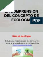 ECOLOGIA COMPRENSION.pptx