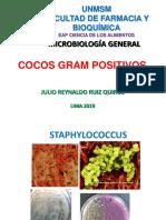 Micro 2019cal-13ava Sem Staphylococcus y Streptococcus Jrq