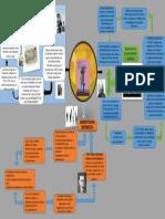 INFOGRAFIA DE TEORIA DE LAS ORGANIZACIONES [Autoguardado].pptx