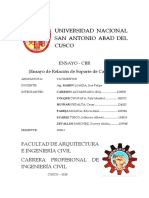 ENSAYO-CBR (1).docx