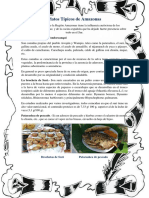 Gastronomía de la región Amazonas