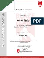 7.- 00111 Certificado Instalacion Mauricio Sanchez.en.es.pdf