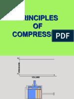 Basic Compression.ppt