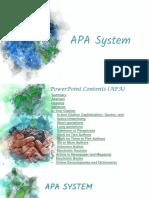 APA System