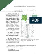 Separacion de Pigmentos Mediante Disolventes