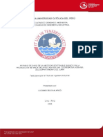 SILVA_ALARCO_LUCIANO_MACA_ENCAPSULADA.pdf