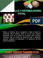 desarrollo y estimulacion.pptx