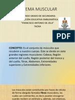 SISTEMA MUSCULAR-power point.pptx