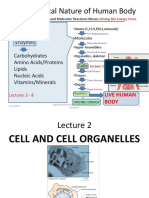 Biochemistry Lecture 2 Cell and Organelles (2)