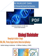 Asam Nukleat dan DNA Ekstrakromosomal.pdf