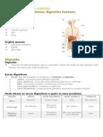 Resumo_sistema Digestivo Humano