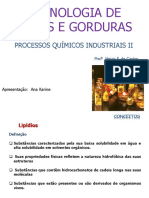 0leoseGorduras2013.AulaAna.pdf