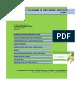 Programa de Prevención y Protección Contra Caídas de Alturas Xxx 201x