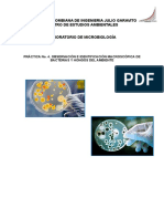 Práctica No. 4. Observación e Identificación Macroscópica de Bacterias y Hongos Del Ambiente