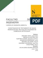 Proyecto de Investigacion - Ecologia