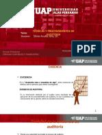 4. Proc. y Tecnicas de Auditoria