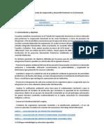 Planes de Tratados de La Amazonia