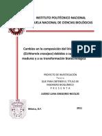 re-33_2011-12-04_tesis_juarez_luna_gregorio.pdf