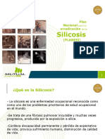 Silicosis Difusion