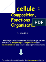 1-Cours d Introduction