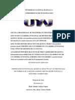 SEMINARIO DE TESIS I.docx