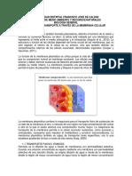 LAB_5_TRANSPORTEDEMEMBRANA_22mayo.pdf