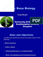 Basic Bone Biology. Presentation by Trudy Roach