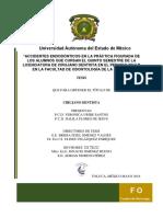 ACCIDENTES+ENDODÓNTICOS+EN+LA+PRÁCTICA+FIGURADA+DE+LOS+ALUM