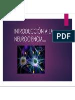 INTRODUCCIÓN A LA NEUROCIENCIA-1.pdf
