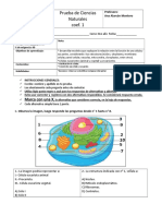Evaluación Coef 1. Célula y función.doc