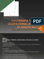 11. Fisioterapia y Terapia Ocupacional Aplicada Al Adulto Mayor