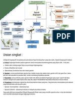 Peta Konsep Biogeografi