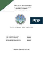 Control de Calidad en Gaseosas 1 (1)