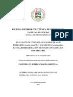 EVALUACIÓN IN VITRO DE LA CAPACIDAD DE MANÍ FORRAJERO (Arachis pintoi W.C) Y GUARUMO (Cecropia peltata L) EN LA BIORREMEDIACIÓN DE SUELOS CONTAMINADOS CON MERCURIO