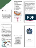 Leaflet Oligomenorhea