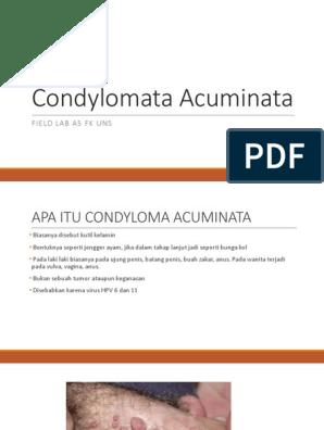 condyloma acuminata apa itu