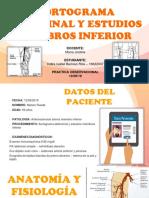 aortograma abdominal y estudios miembros inferior