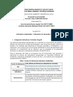 TALLER Nº 3. Indicadores Ambientales_Indicadores de Desarrollo Sostenible